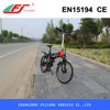 250W electric bike, electric bike price, mini bike for adult with EN15194