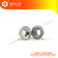 304 316 A2-70 A4-70 Stainless Steel Hex Flange Nuts