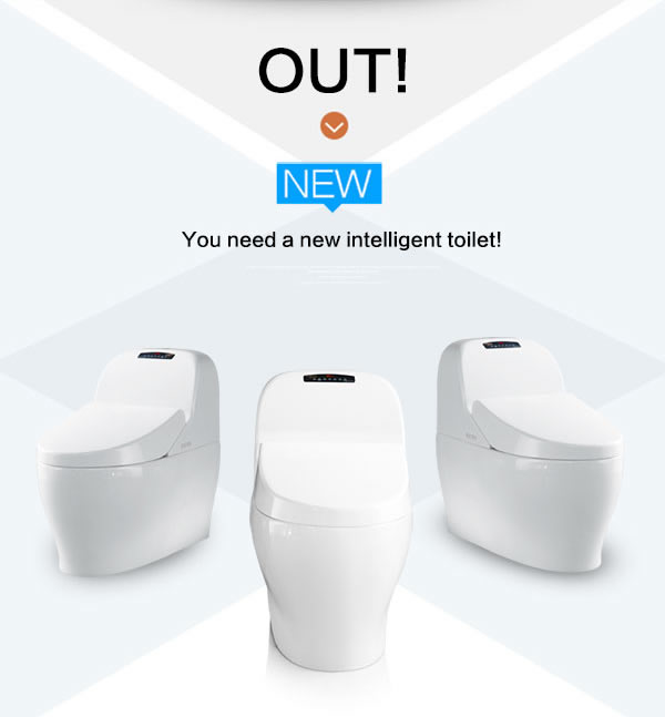 Bathroom design toilet bowl hidden toilet video smart toilet