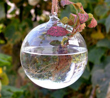 Hanging glass ball terrarium/glass vase