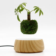 2016 New Creative Christmas gifts Floating Air Bonsai