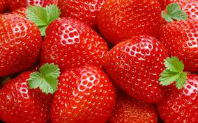 natural plant Strawberry Powder P.E extract with best price
