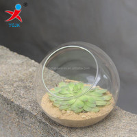 open glass ball with flat bottom for plant