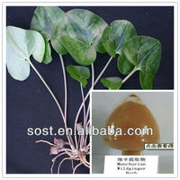 pure natural extract Asarum Extract for calm