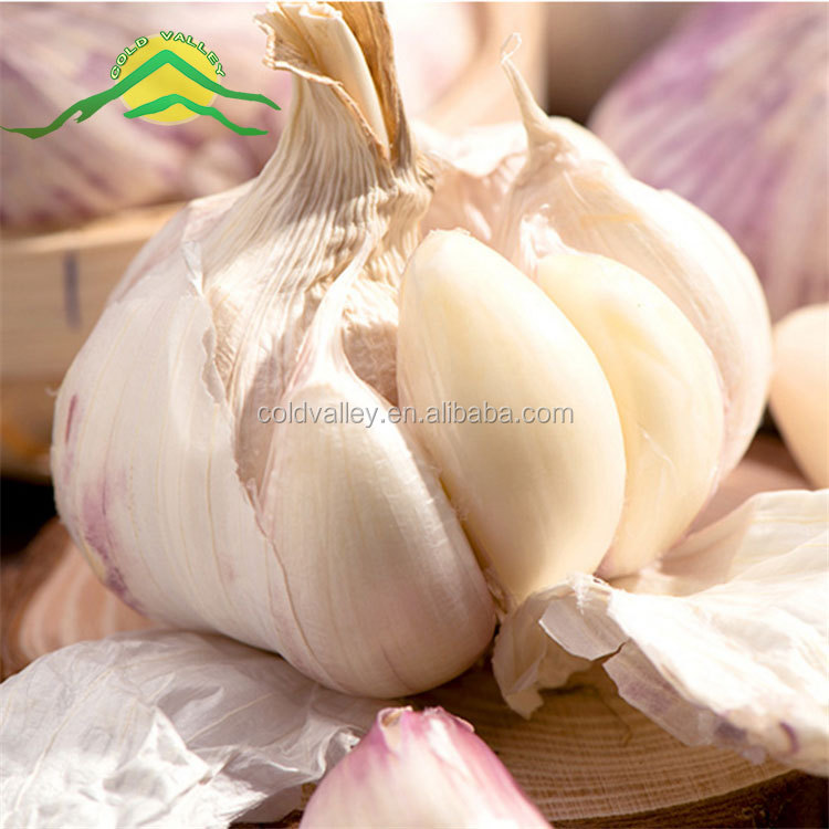 2017 China fresh white garlic price