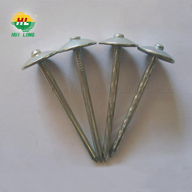 good quality galvanized roofing nails buy from anping(direct sale)