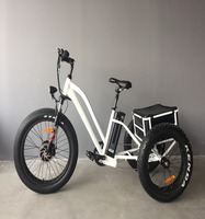 powerful engine fat tire three wheel cargo tricycle with big strong baskets