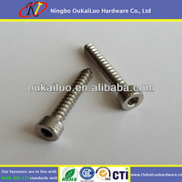Stainless Steel Hex Socket Cap Head Self Tapping Screw