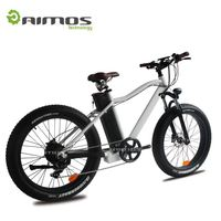 City Star CE Approved EN15194 New Model electric bicycle 700C 26 inch electric bike 48V 1000W bicicleta electrica