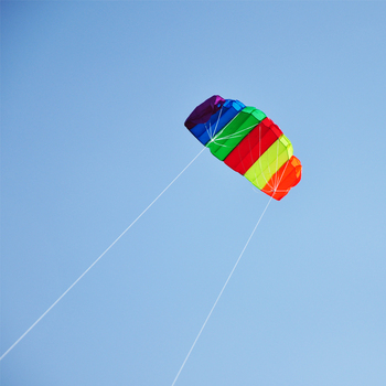 high quality power kite from professional kite factory