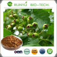 Fresh hawthorn berry plants, hawthorn leaf extract, hawthorn berry extract supplier
