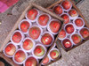 Fresh apple fruit for sale red star apple by Chinese supplier