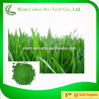Desert barley Extract Type and Extremely concentrated juice Form barley grass powder