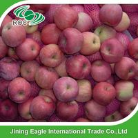 China fruit fuji apple exporter in China