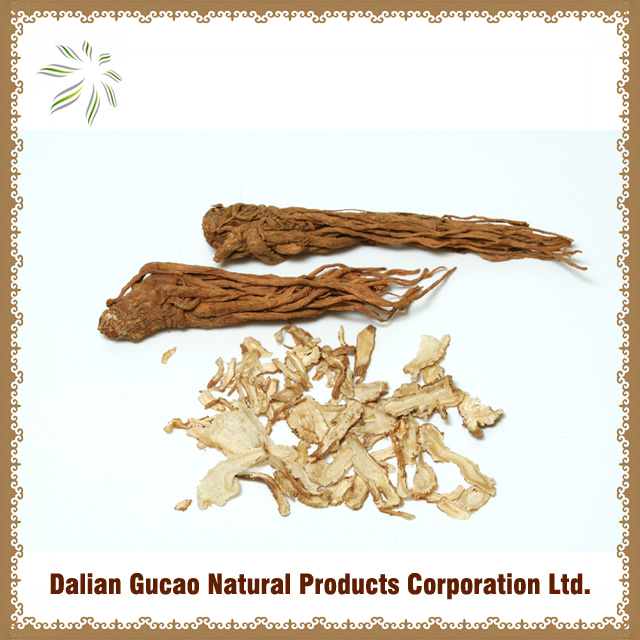 100%natural Low pesticide residue Chinese Angelica