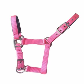 PP Utility Horse Tack With Hardware