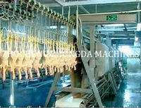 CHICKEN SLAUGHTER MACHINE