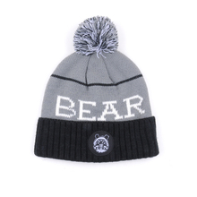 New sports team jacquard logo winter knitted beanie hat with ball