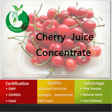 Pure Natural Cherry Powder/Cherry Juice/Tart Cherry Extract