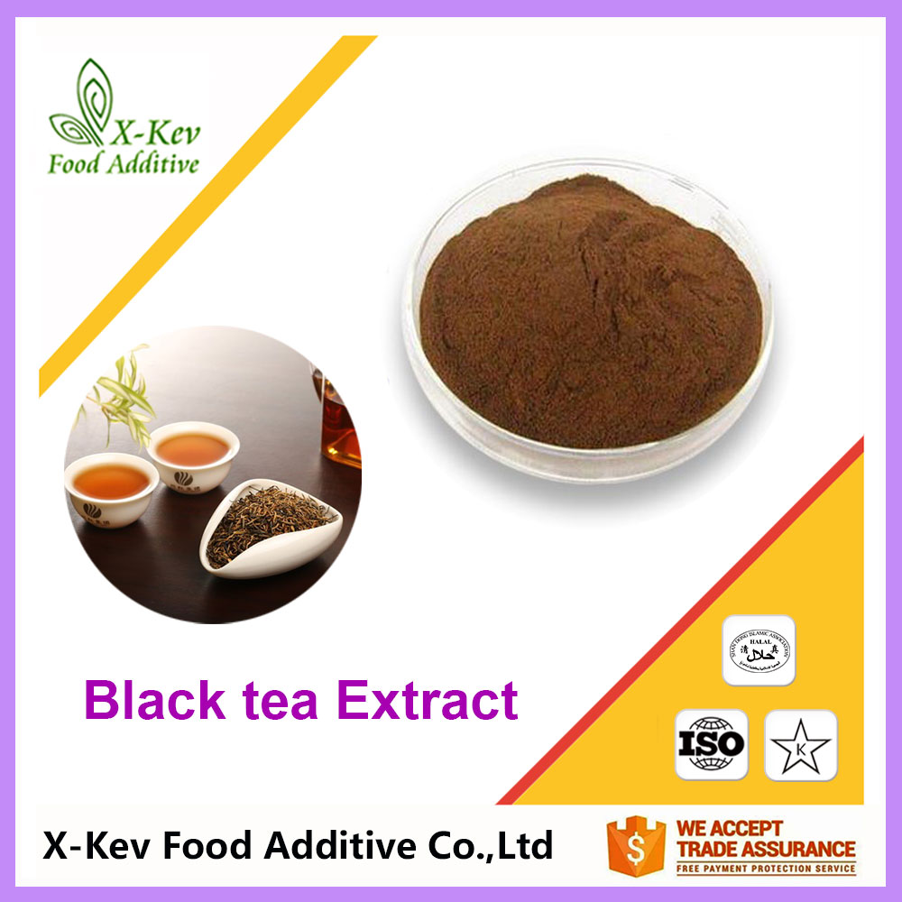 100% Pure Natural Black Tea Extract 10-95% Tea Polyphenols For Capsule