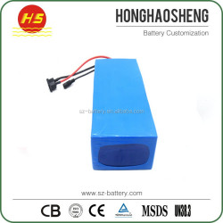 48v Nominal Voltage and Li-Ion Type 48v 20ah lifepo4 battery pack