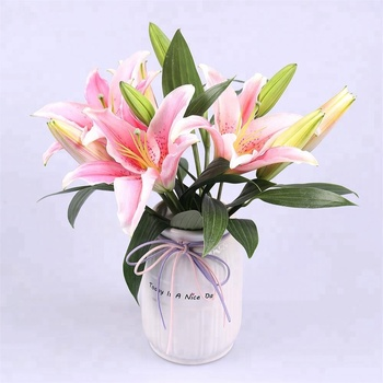 Wholesale Natural Fresh Cut Oriental Lily Flower Sorbonne from Yunnan