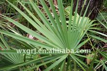 Saw Palmetto Extract, Total Fatty Acids
