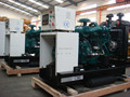 Hot sale biomass electric power generator with CE ISO approved