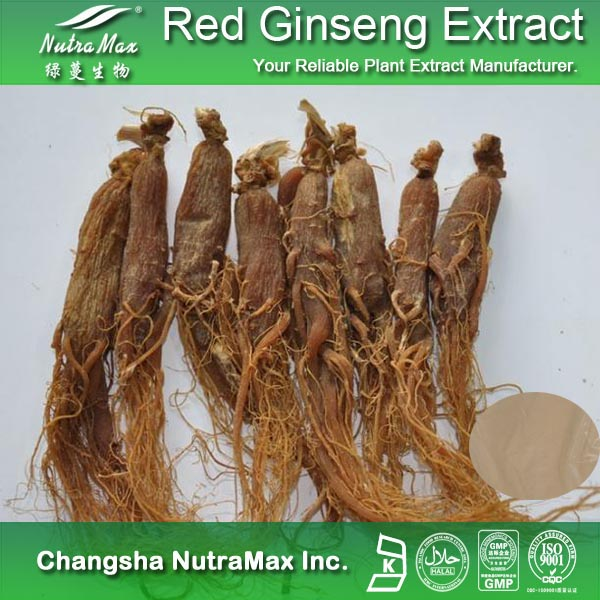 Health Food Red Ginseng Extract,Red Ginseng Extract Powder, Low Price Red Ginseng Powder