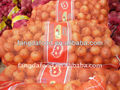 Yellow Onions Supplier