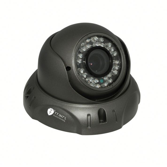 New Item HD Analog series Outdoor IR AHD mini dome ptz kamera