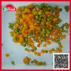 canne food new corp fruits and vegetables with top quality