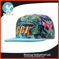 Flat bill trendy designs 5 panel hat