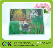 China Famous supplier! Hot Selling 3D Wall Paper Card