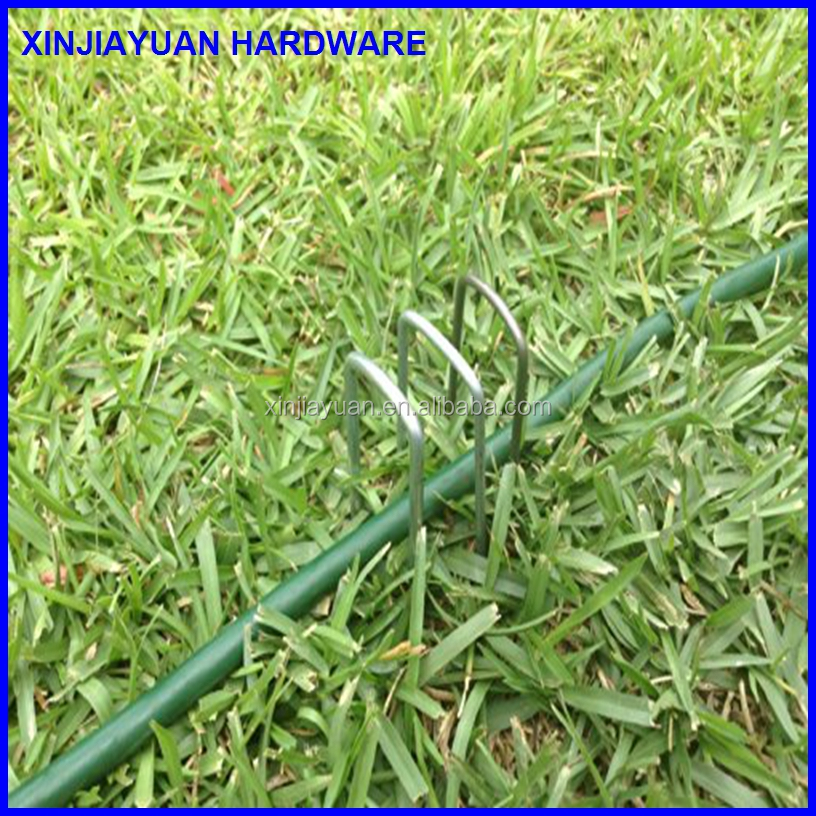 Anti-rust 6'' 11 gauge heavy-duty U-shaped sod staple ,anchor pin ,garden peg