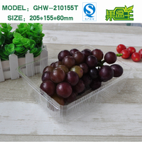Hot Sale Blister Packing Disposable Transparent Fruit Plastic Tray
