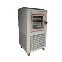 TPV-10FD Vegetable Fruit Freeze Drying Lyophilizer Equipment