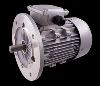 YL series aluminum housing three-phase asynchronous motor/ electric motor