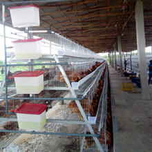 High Quality Chicken Layer Breeding Battery Cage