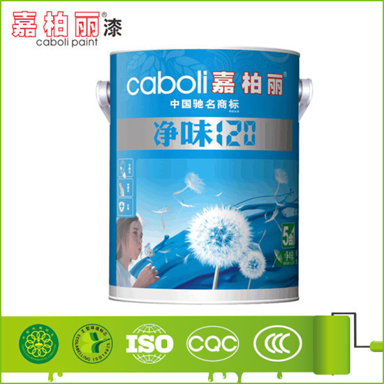 Caboli vinyl acrylic copolymer for paint