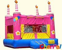 Inflatable Birthday Cake Party Bounce Castle/Carnival Party Bounce House