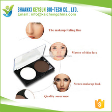 Recommend Brand Makeup 2 Colors Concealer Bronzer and Highlighter Camouflage Neutral Primer Contour Facial Shadow Makeup Pow