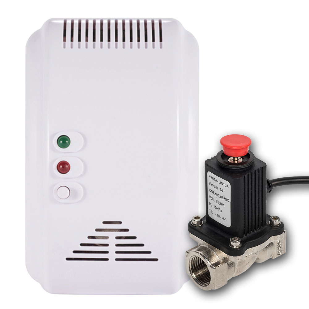Smart Wireless Home Kitchen Gas Sensor Detector With Valve Gas Leak