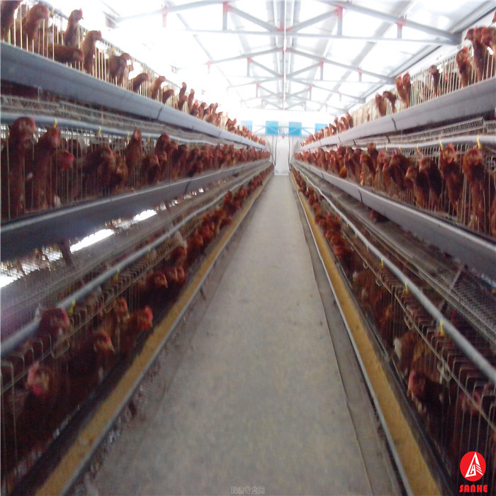 cheap industrial broiler chicken poultry farm shed design drawing slaughter house for sale