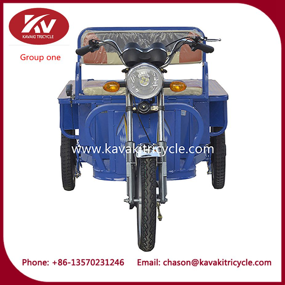 48V Electric advertising Cargo Trike 3 wheel electric tricycle electric tricycle