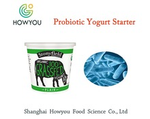 Superior lactic acid bacteria yogurt starter powder