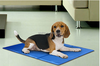 led bed heated pet cushion Plastic drop