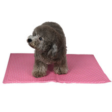Fashion Products Eco-friendly Pet Ice Mat for hot summer