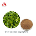 pure natural high quality tea polyphenol 98% green tea extract