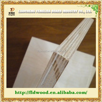 Marine Poplar Plywood sheet
